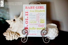 Custom Designed Birth Annonucement